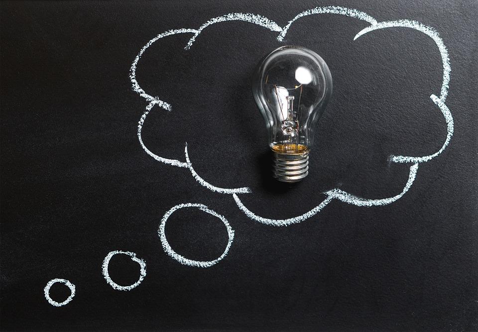 うさぎの知能はどのくらい?頭の良さ、IQを調べてみました。